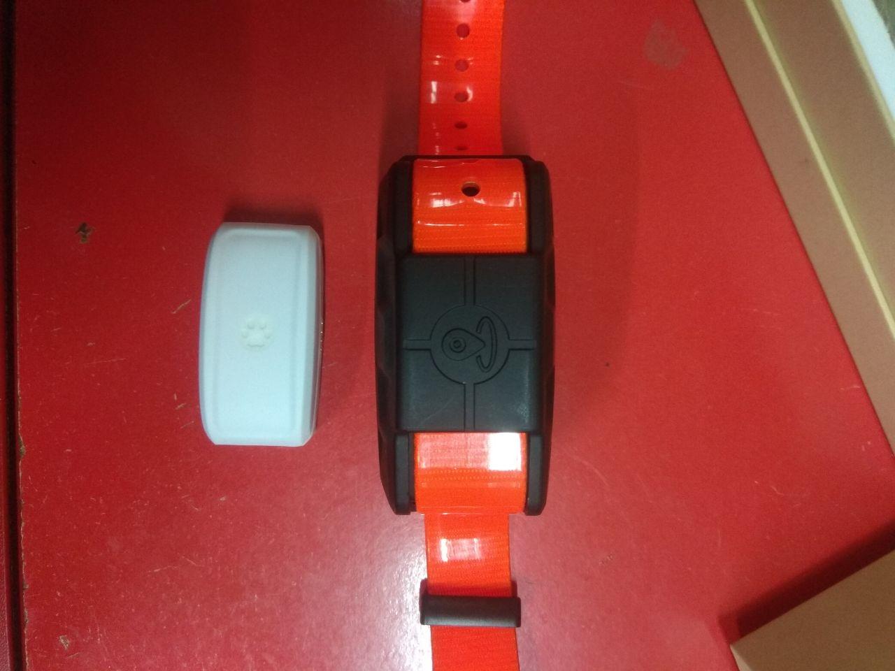 GPS трекер/GPS маяк (ошейник) Skynet - 4
